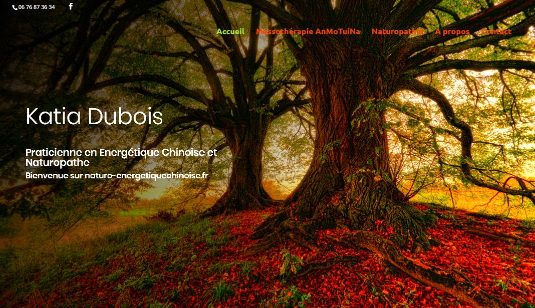 image et lien vers le site naturo-energetiquechinoise.fr